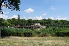 Park Solankowy Inowrocław 3