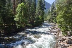 Park Narodowy Yosemite - rzeka