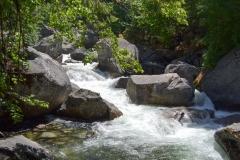 Park Narodowy Yosemite - rzeka 2