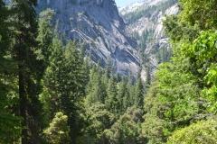 Park Narodowy Yosemite - rzeka 3